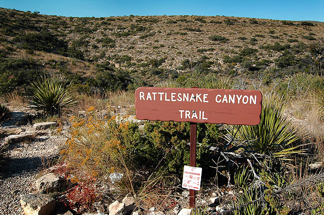 Trail head, Rattlesnake Canyon, Carlsbad Caverns National Park