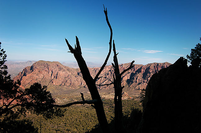 View from about halfway up the Emory Peak trail, Chisos Mountains, Big Bend.