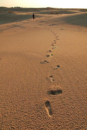 Footprints, Monahans Sandhills State Park, Texas.