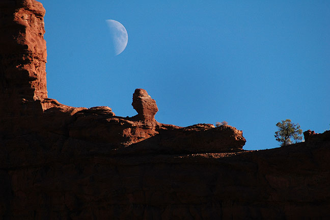 The half moon rises at Fisher Towers.