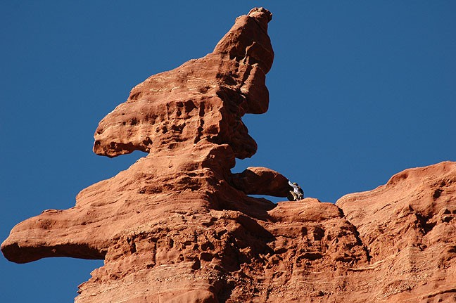 A climber makes his way up one of the pinnacles at Fisher Towers east of Moab.