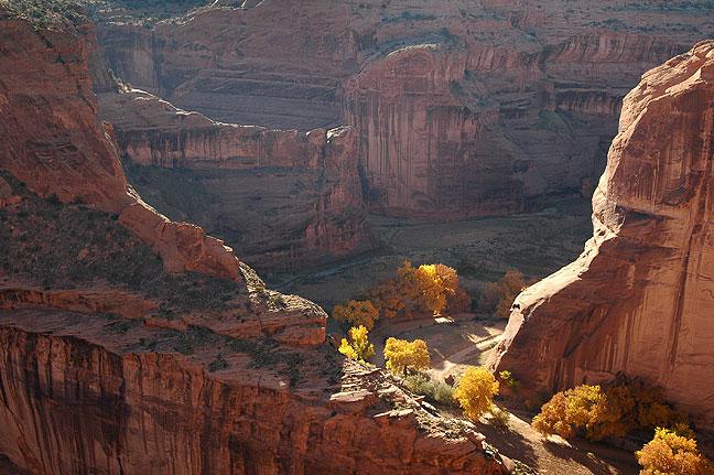 Canyon del Muerto, Canyon de Chelly National Monument, Arizona