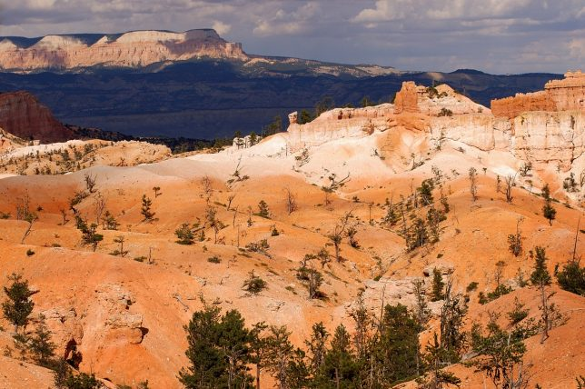 Bryce Canyon is accessed by a ridge that runs the length of the park, and affords excellent views far across southern Utah.