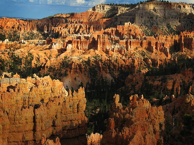 Evening, Bryce Canyon