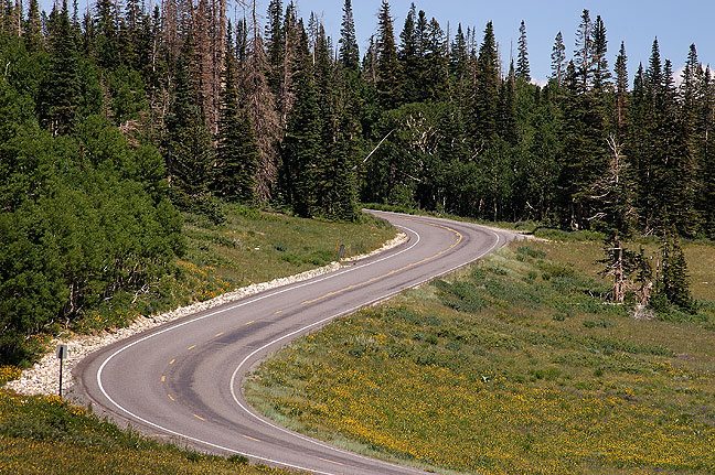 Park road, Cedar Breaks.