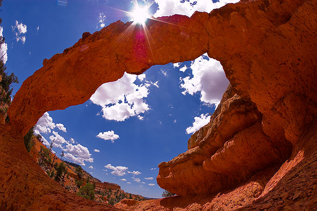 Losee Canyon Natural Arch, Red Canyon, Utah.