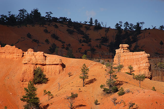 Cliffs and tree line, Red Canyon, Utah.
