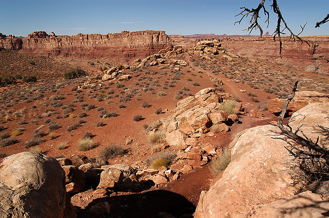 On the Confluence Overlook trail, Needles district, Canyonlands National Park, Utah.