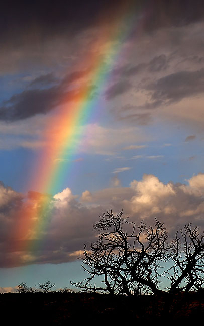 Rainbow in morning virga, Gemini Bridges near Moab, Utah.