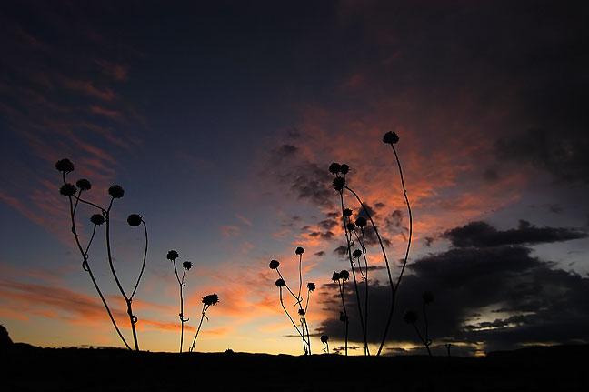 Sunrise on U. S. 191 south of Moab, Utah.
