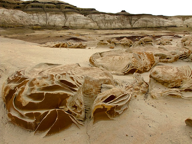 "The ""Cracked Eggs"" at Bisti"