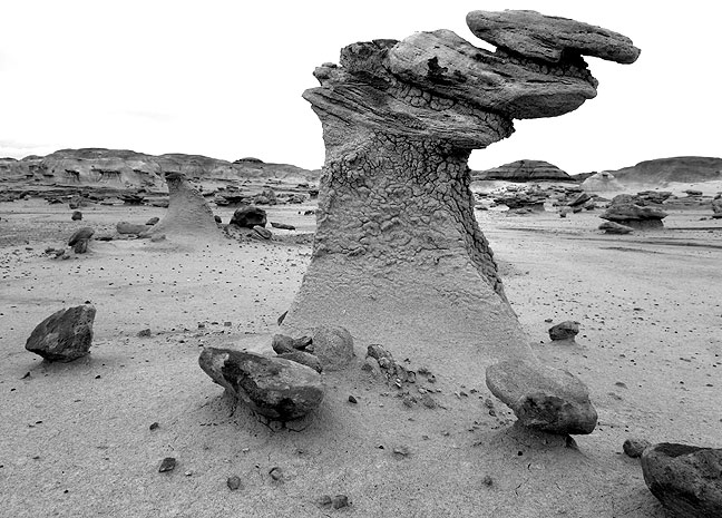 This bird-like hoodoo stood alone in an open, flat area.