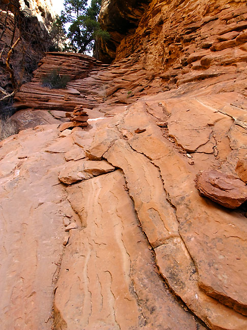 This layered sandstone crack leads down into Elephant Canyon.