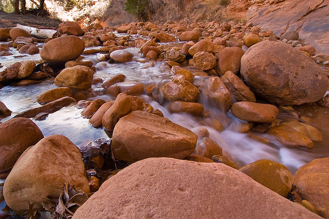 A mile or two upcanyon, I found this wide spot in the stream where water flowed noisily through a stone field.