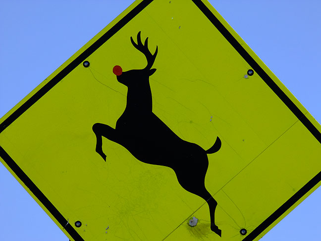 Rudolph crossing sign, U. S. 82 east of Alamogordo, New Mexico.