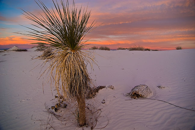 Waining light at White Sands.