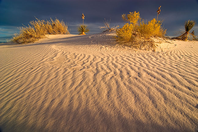 "An excellent ""golden moment"" photo op at White Sands National Monument, New Mexico."