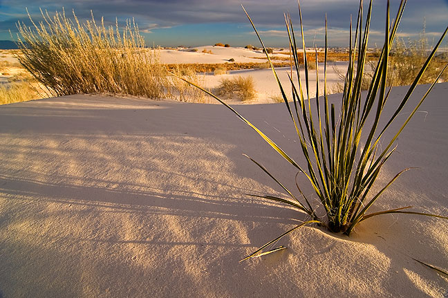 Sunset, White Sands.