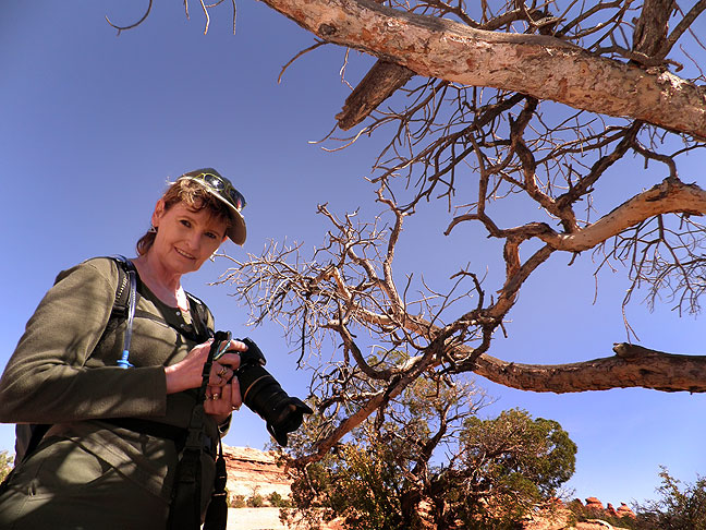 Abby photographs a dead tree on the Delicate Arch trail in Arches National Park, Utah.