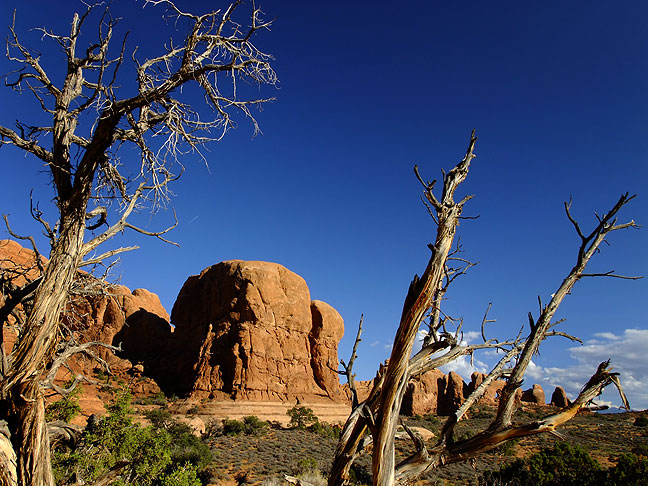 The short trail to Double Arch in late afternoon light.