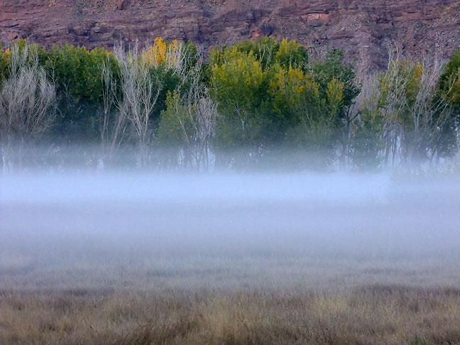Predawn fog, Moab, Utah.