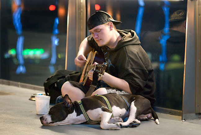 I photographed this street musician and his dog on the same skywalk that is in the previous images.