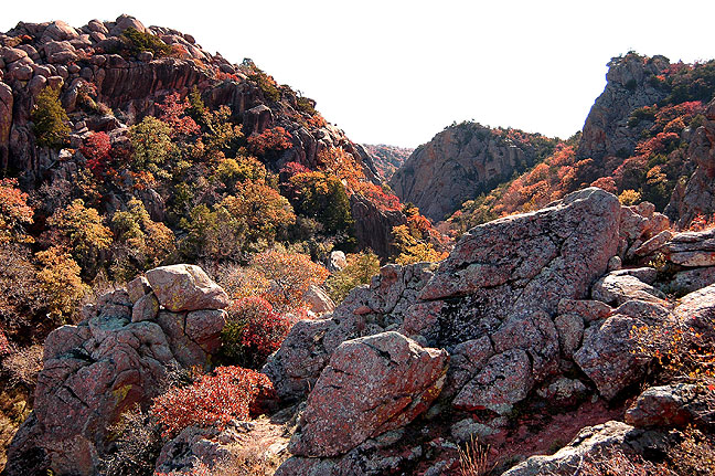 Autumn foliage, The Narrows, November 2006.