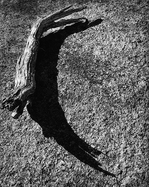 Deadwood and granite slickrock, 1999.