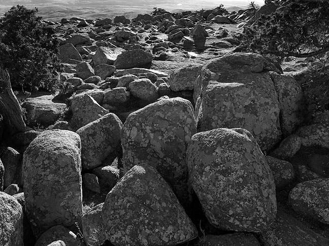 Boulder field, Mount Scott summit, January 2012.