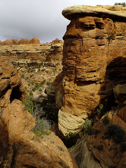 This commanding view looks over the approach to Elephant Canyon on the Chesler Park trail.