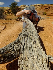 Jim photographs a dead tree; I told him early on how much Abby likes to shoot dead trees, so he kept an eye out for them.