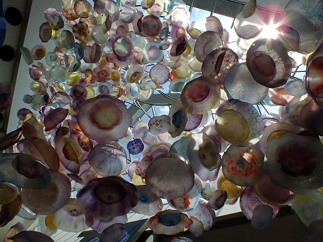 In the lofted ceiling of the café at the National Aquarium is this complex, beautiful jellyfish mobile.