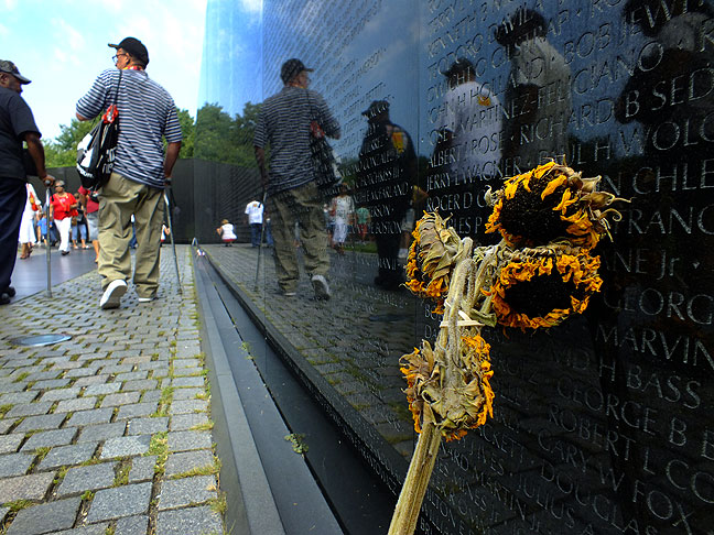A wilted flower stands at the foot of the Vietnam Veterans Memorial.