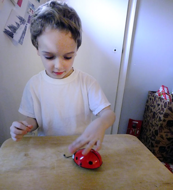 Paul plays with a metal, mechanical ladybug we bought for him for Christmas. A gear in the toy connected to its antennas prevent it from running off the edge of the table. It was made in the Czech Republic.