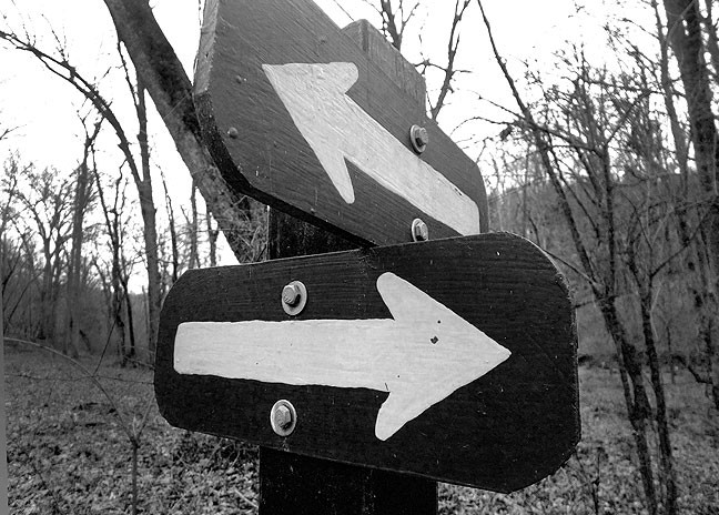 Signs like these point to a comic irony about the possibility of getting lost in the woods.