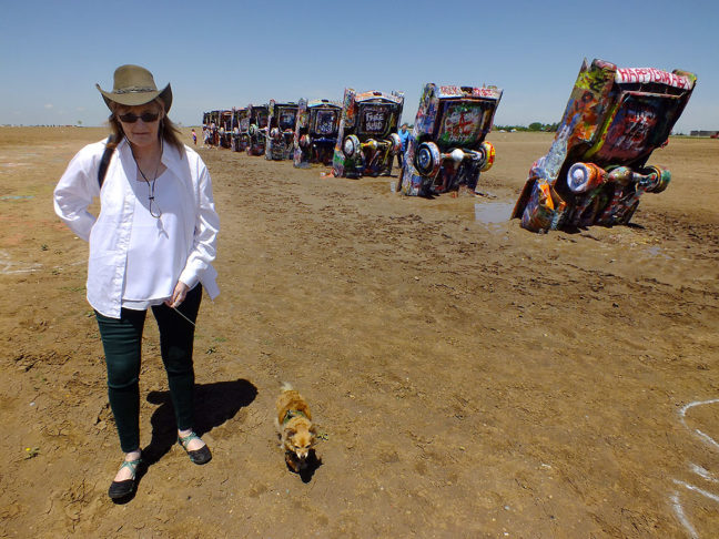 Abby walks Sierra the Chihuahua past the ten Cadillacs of the Cadillac Ranch.