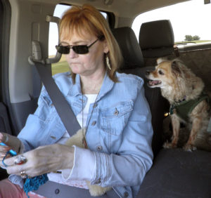 While Max the Chihuahua was perfectly happy to nap on the dog-proof cover in the back seat, Sierra constantly wanted to be in Abby's lap as you can see here, despite Abby wanting to crochet for much of the trip.