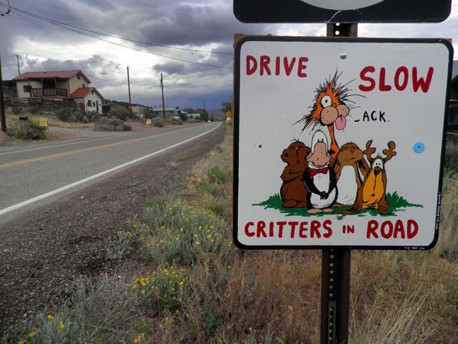 This sign greets visitors to Madrid, New Mexico, one of the dog-friendliest places we have ever visited.