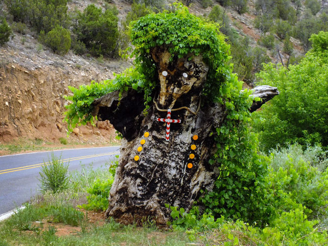 This tree made into a creature (I think it resembles a badger) stands guard along state highway 3 near Ribera, New Mexico.