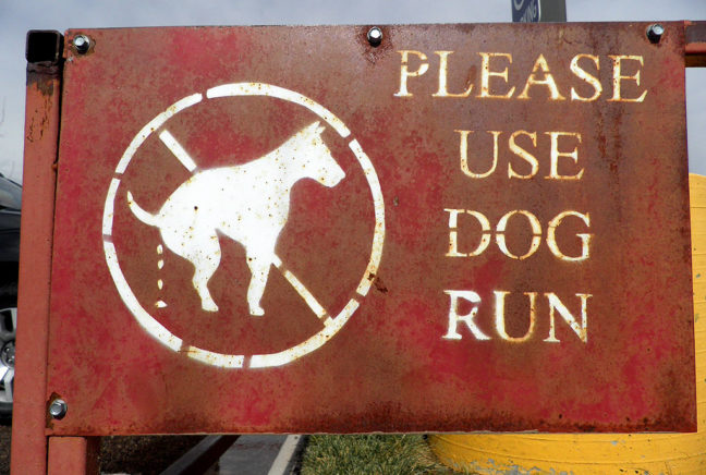 Abby and I spotted this sign at Russell's Travel Stop in eastern New Mexico.