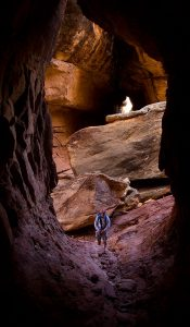 A long cave led up out of the Joint Trail for some distance, shown here from the end of the cave with Scott shown at its entrance for scale.