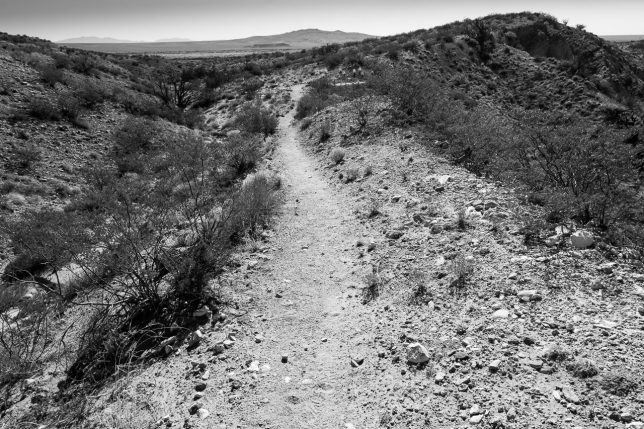 Desert trails are very compelling to me. They are an invitation to solitude and freedom.