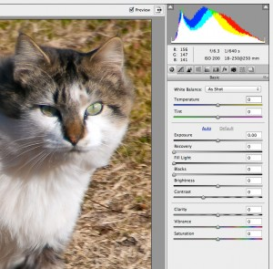 This is the exposure control interface in the Adobe RAW dialog.