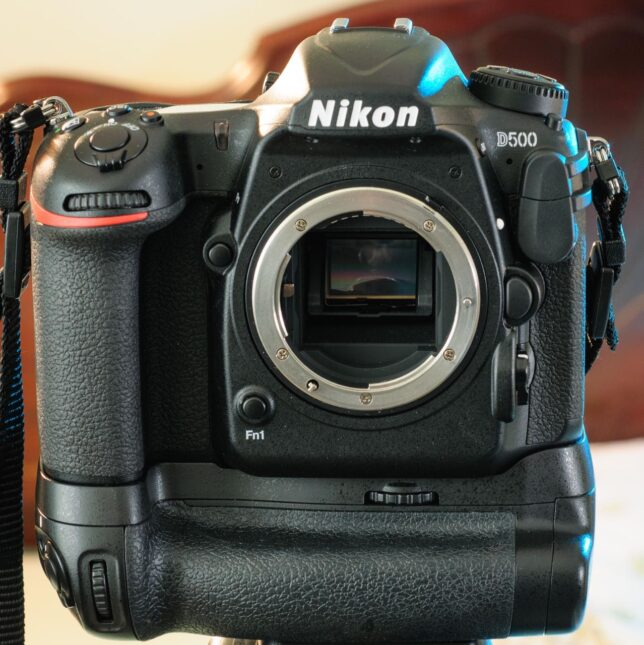 The Nikon D500 stands tall on its large vertical grip. The grip adds a battery, and, more significantly, a better handling experience for me and my long hands.