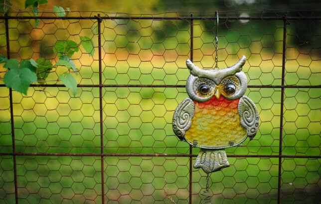 I shot this frame of Abby's owl yard ornament expressly to analyze the 50mm's bokeh, which I would call average.