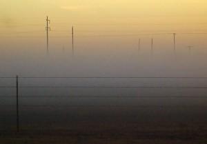 A thin layer of fog settles on pastures around Ryan, Oklahoma yesterday.