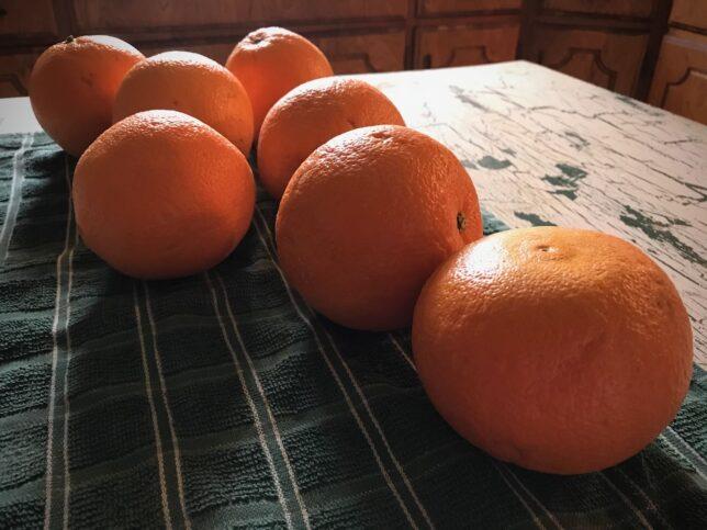 I have really been enjoying oranges lately.