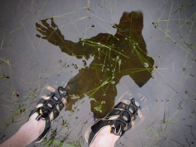 Reinventing the selfie? I made this after a thunderstorm. The water was cold.