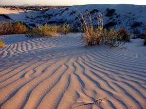 Gypsum dunes at last light