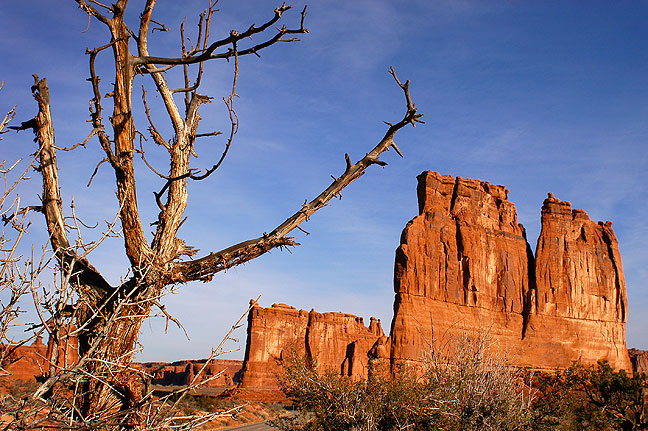 The drive through Arches is spectacular. Early on is this vista of the Courthouse Towers.